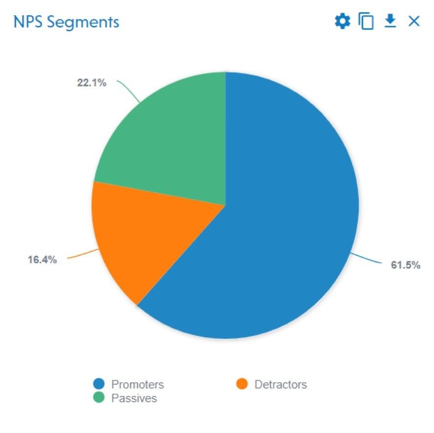 NPS Segments